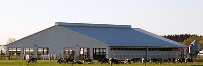 Pasture-Dairy barn